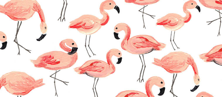decoration flamingo tendance